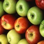 фото яблоки